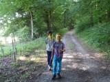 Bild-Wald-unten-160x120